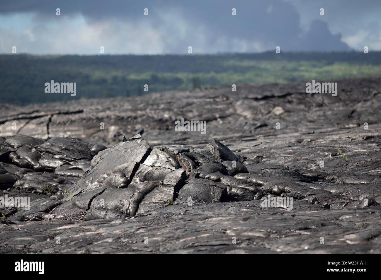 Field of pahoehoe lava rock on Kilauea volcano, Big Island, Hawaii - Stock Image