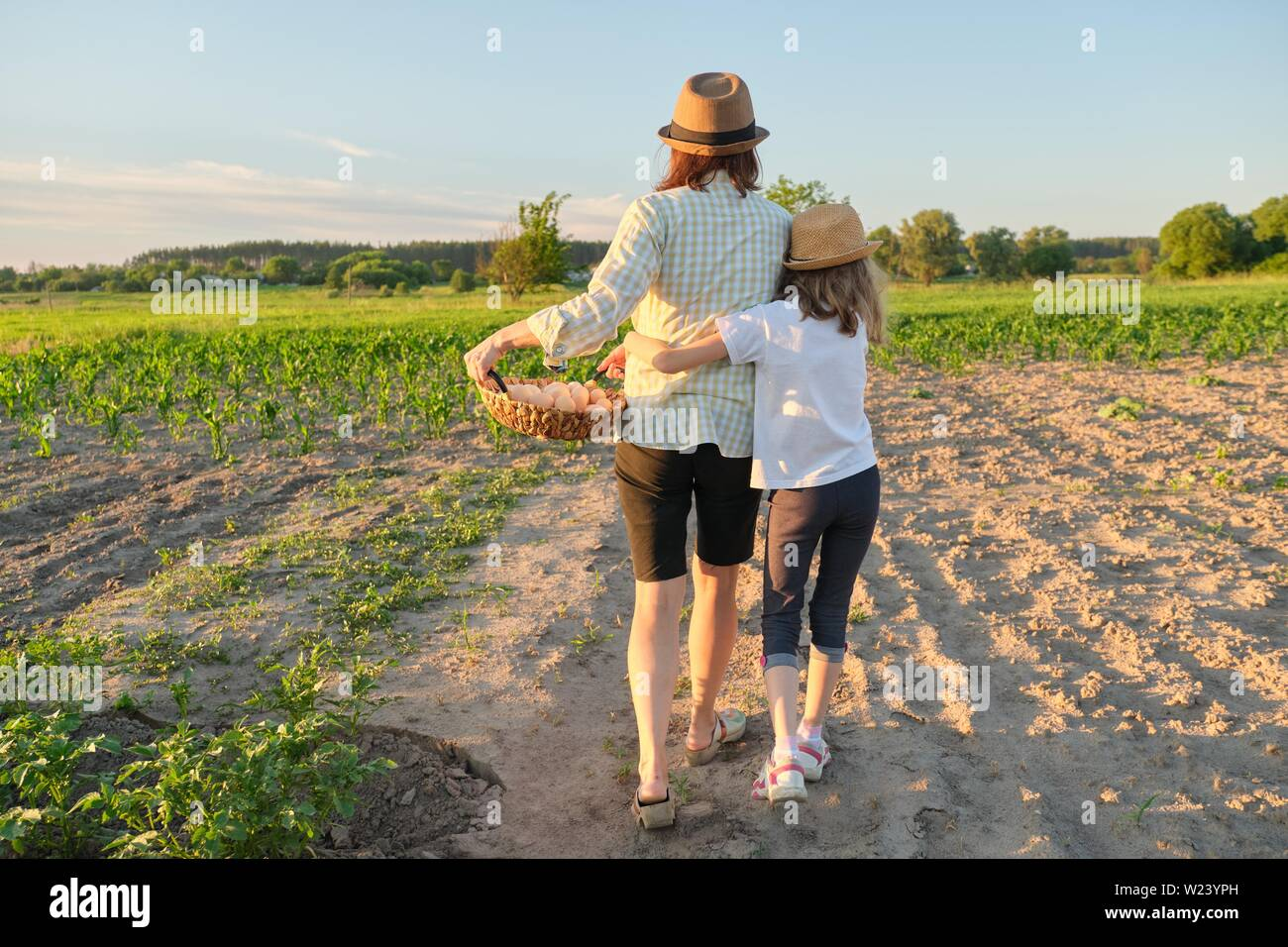 Mother and daughter walking with a basket of fresh eggs in the garden, back view. - Stock Image