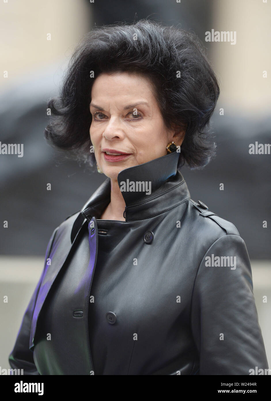 The Royal Academy Of Arts Summer Exhibition Preview Party at the Royal Academy Featuring: Bianca Jagger Where: London, United Kingdom When: 04 Jun 2019 Credit: WENN.com - Stock Image