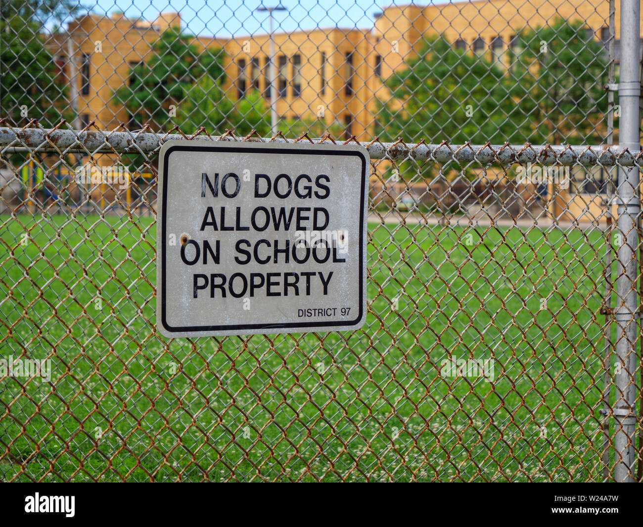 No dogs allowed on school property sign. Oak Park, Illinois. - Stock Image
