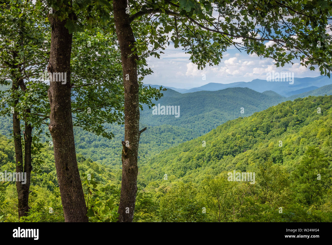 View of Hog Pen Gap near the Appalachian Trail along the Richard B. Russell Scenic Highway in the Blue Ridge Mountains of Northeast Georgia. (USA) Stock Photo