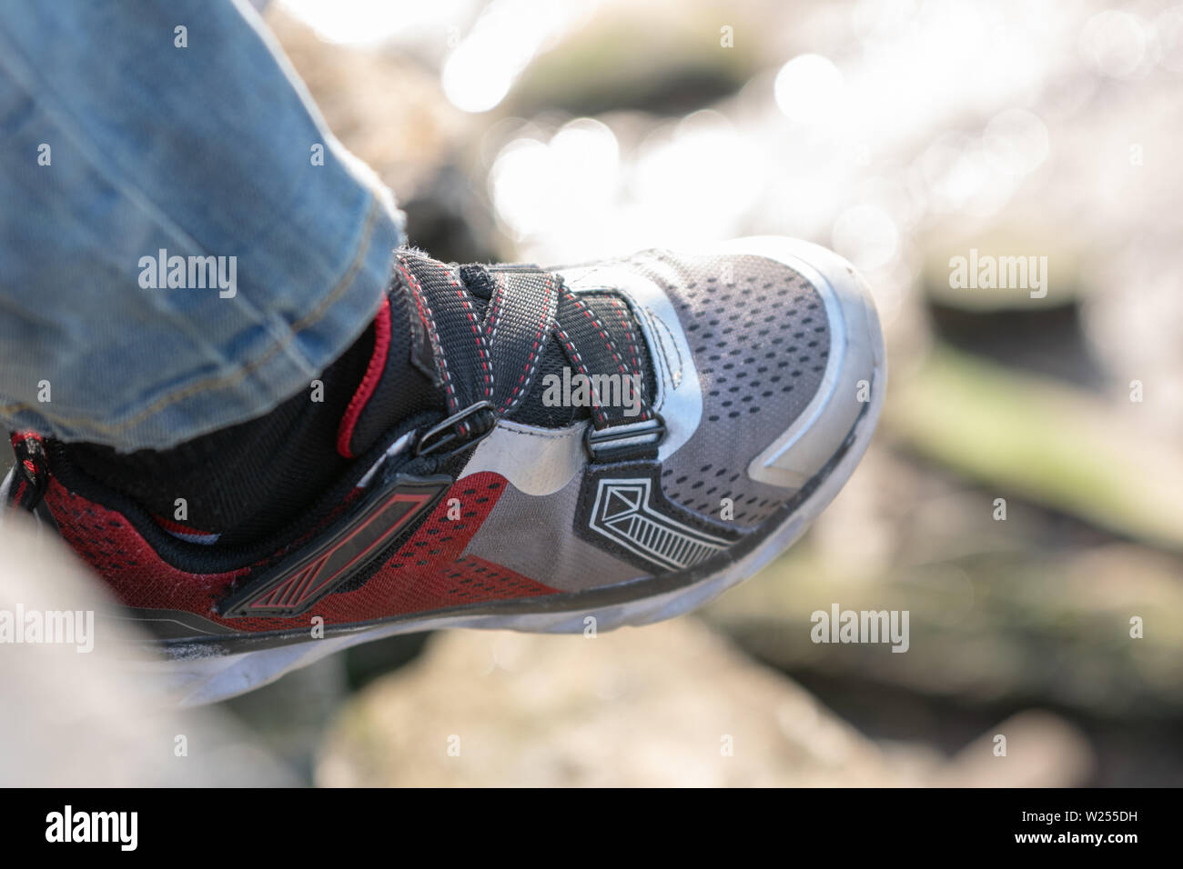 Close-up of a childs sneaker - Stock Image