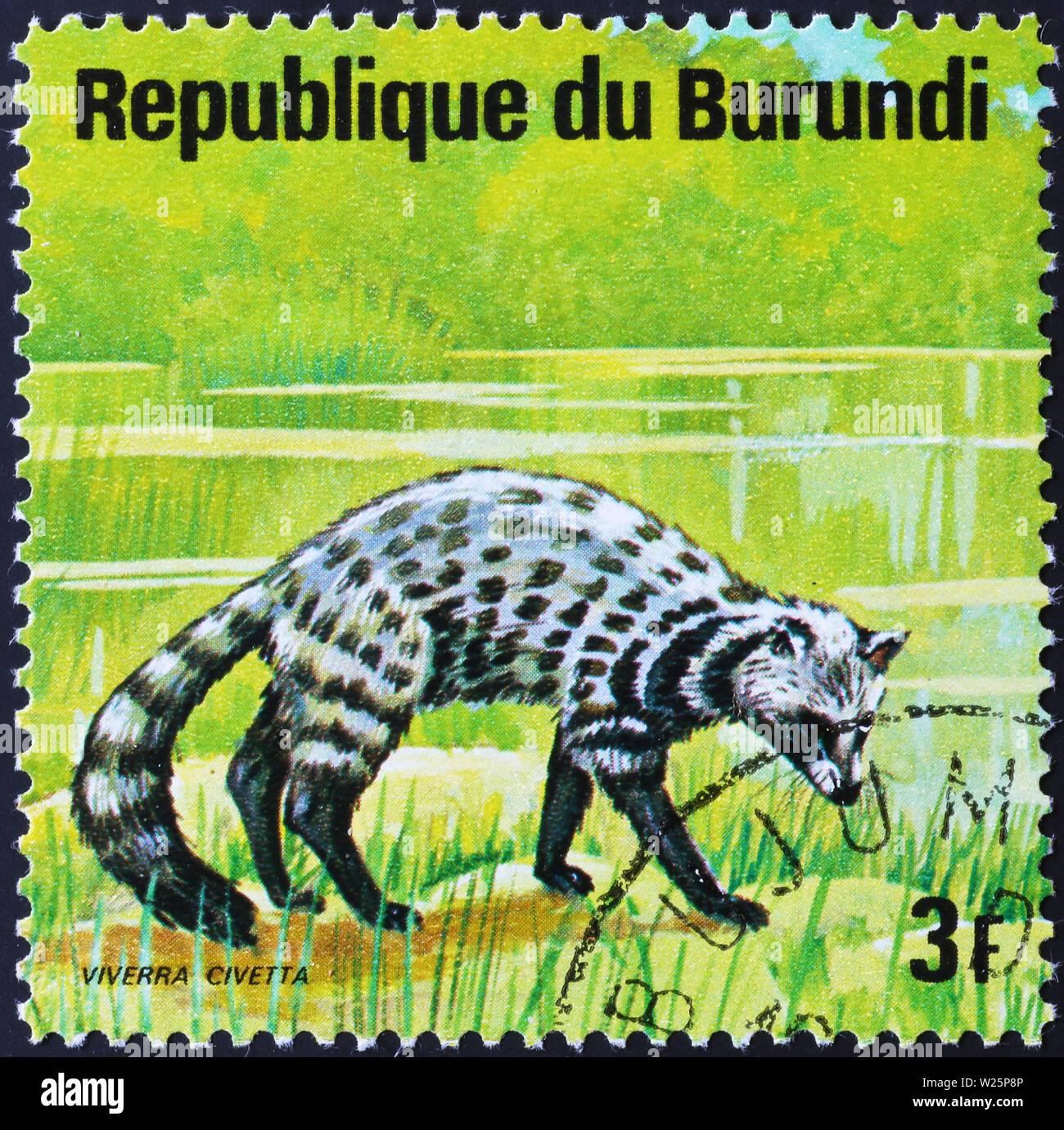 African civet on postage stamp of Burundi - Stock Image