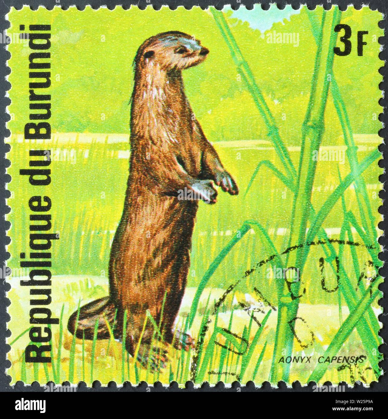 Otter on postage stamp of Burundi - Stock Image