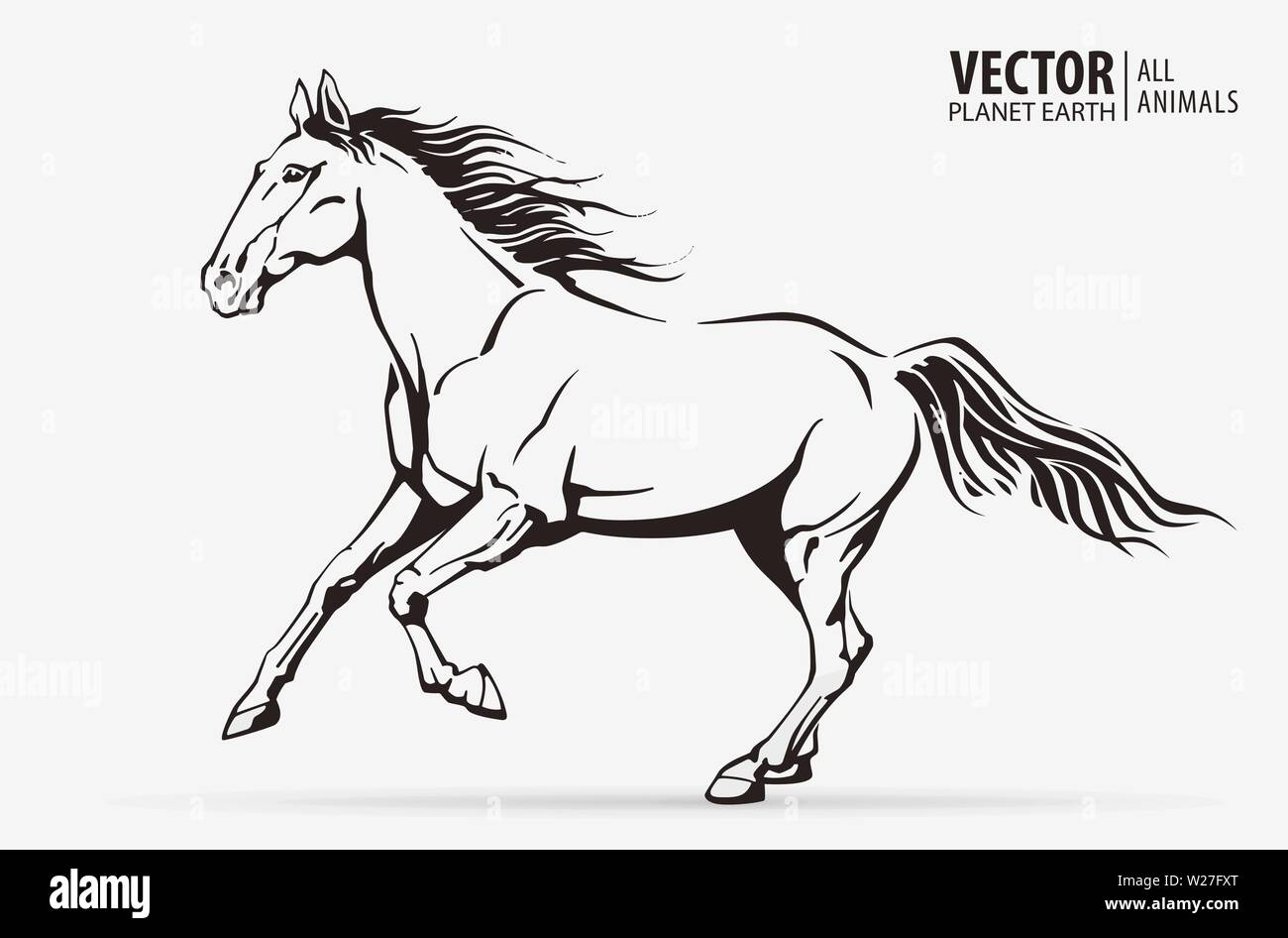 Silhouette Of A Running Horse Galloping Animal Logo Champion Sport Isolated On A White Background Vector Illustration Stock Vector Image Art Alamy