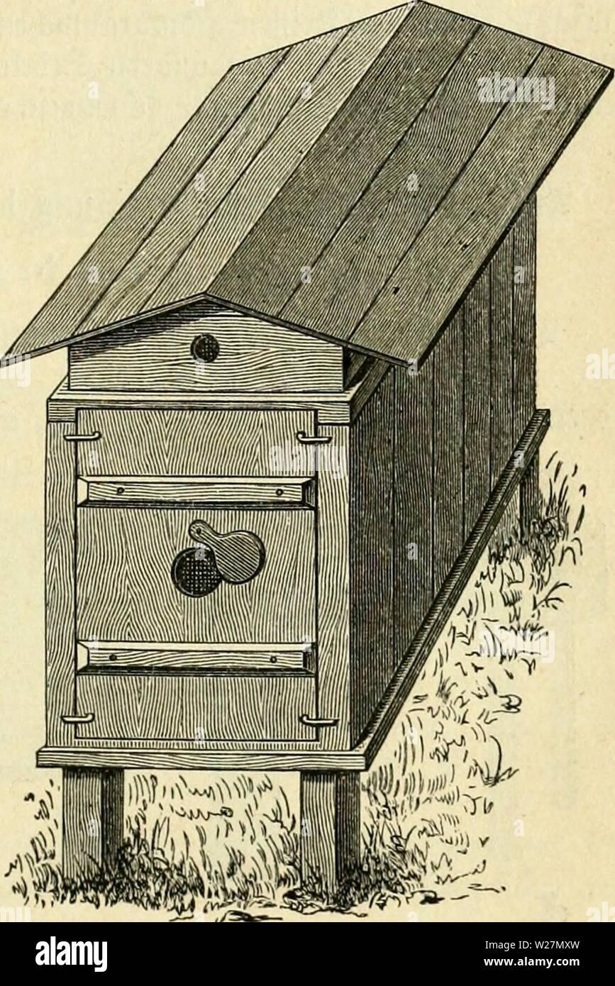 Archive image from page 296 of Das buch von der biene. Das buch von der biene  dasbuchvonderbie00witzg Year: 1898  er moUlUu. 281 2)ie 5luflQfle für bie 9f?äm(i)en bitbet eine überjinfte (Sifenfrf)iene öon 20—25 mm Sreite, bie o an ber oberen DZute aufgenagelt ift, bo fie ber ganäen Sänge nacf) um 3 mm über bie SfJute emporftictit. ®urd) biefe inrirf)tung tüirb 'öa 5lnfitten ber 9af)nien üollftänbig oerfjinbert unb eine S3eiDeglid)teit be§ äBa6en6aue§ unb eine 93equemlic{)eit ber Se'anblung erreidit, raie fie feine anbere SBot)nung aufmeifen fann. 2BiÜ man §. 33. bie erfte ober smeite SSnbe, Stock Photo