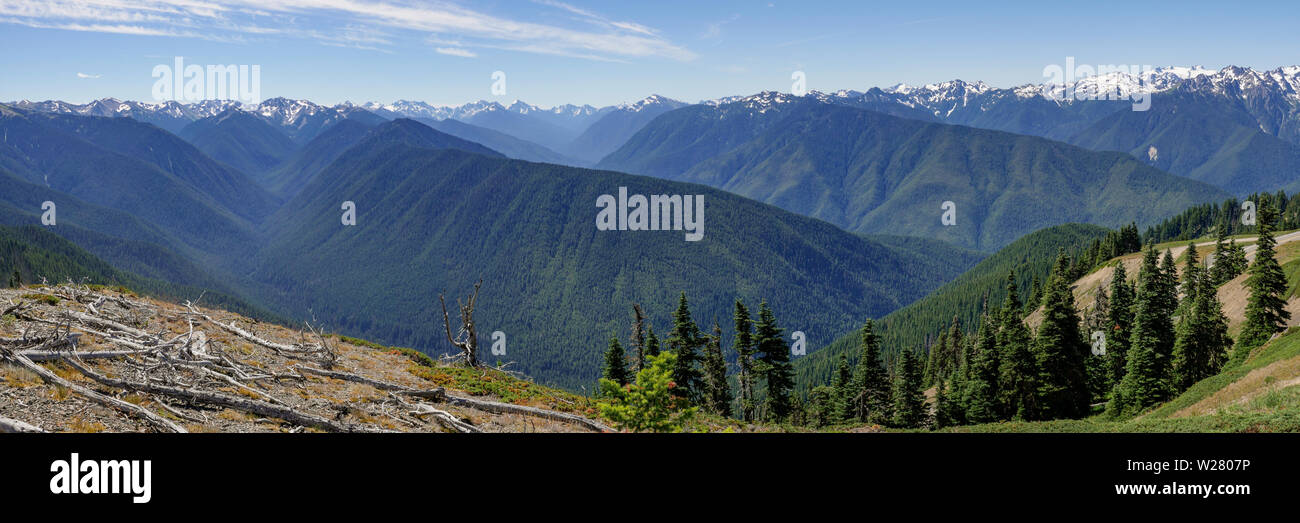 Hurricane Ridge, Olympic National Park, Washington, USA.  View from hiking trail. Stock Photo