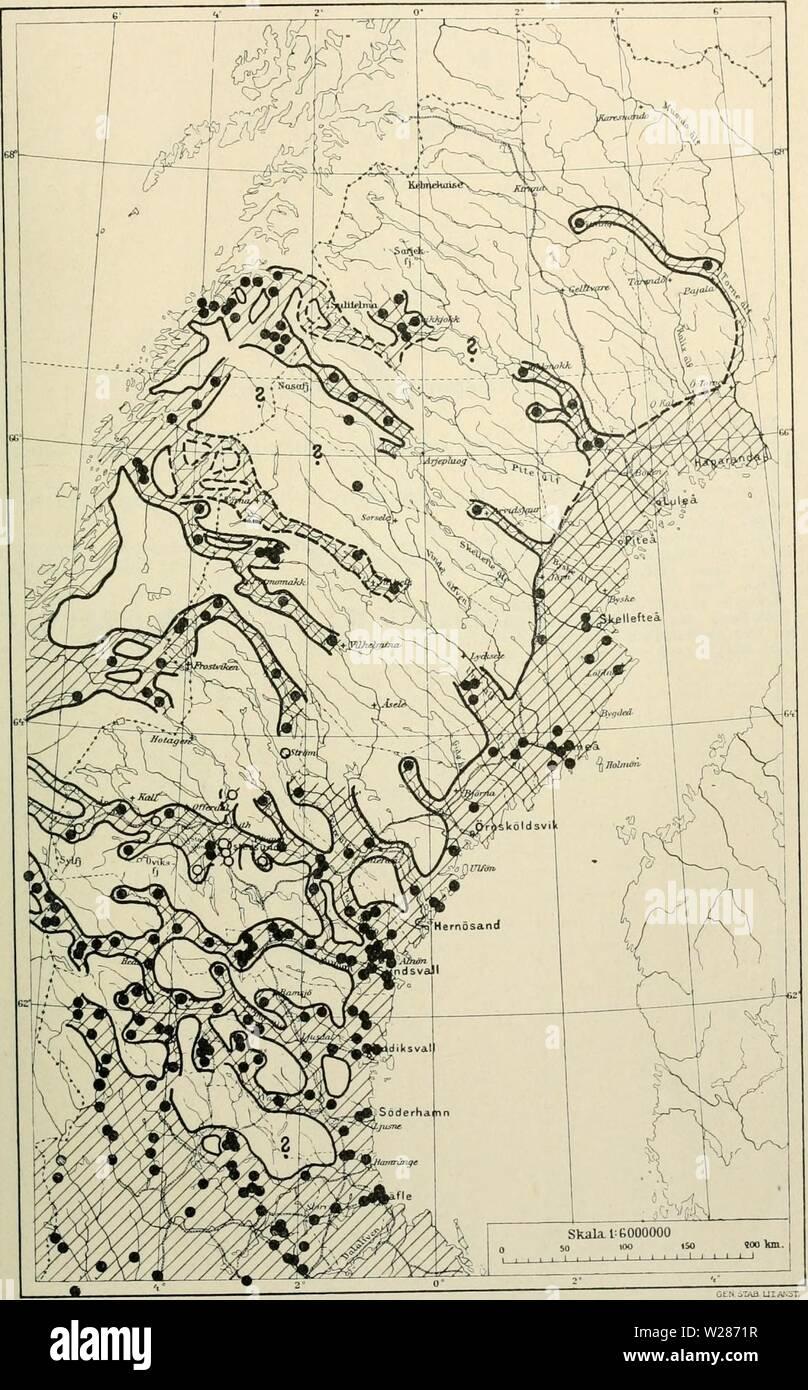 Archive image from page 374 of Den norrländska florans  geografiska. Den norrländska florans : geografiska fördelning och invandringshistoria ; med särskild hänsyn till dess sydskandinaviskar arter  dennorrlndskaf00ande Year: 1912  KARTOR OCH STà NDORTER 359 Kartan 19. Tibast (Daphne mezereura).    Anmärkningsvärdt är, att arten tyckes saknas inom stora delar af Jämtland. Jfr i öfrigt texten s. ihh. Stock Photo
