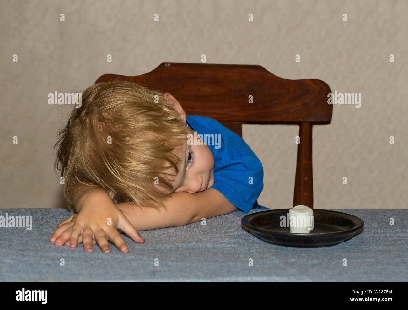 Young child sitting at a table waiting patiently for a marshmallow Stock Photo