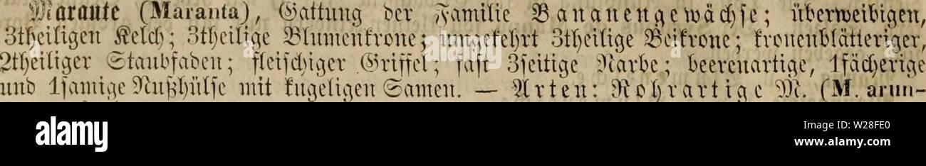 Archive image from page 445 of Das grosse illustrirte Kräuter-Buch - Stock Image