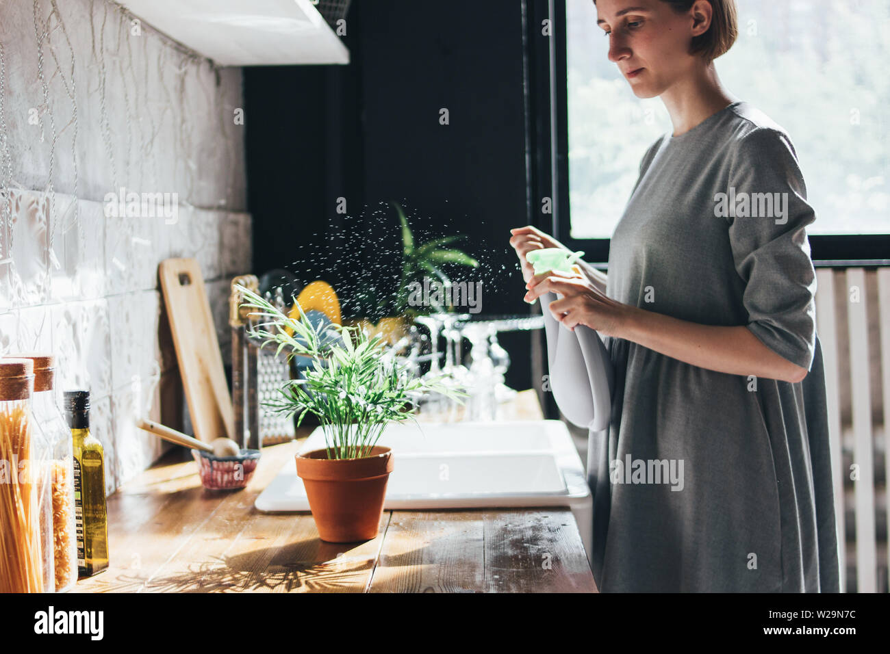 Young woman sprays water on a houseplant in the kitchen, slow life Stock Photo