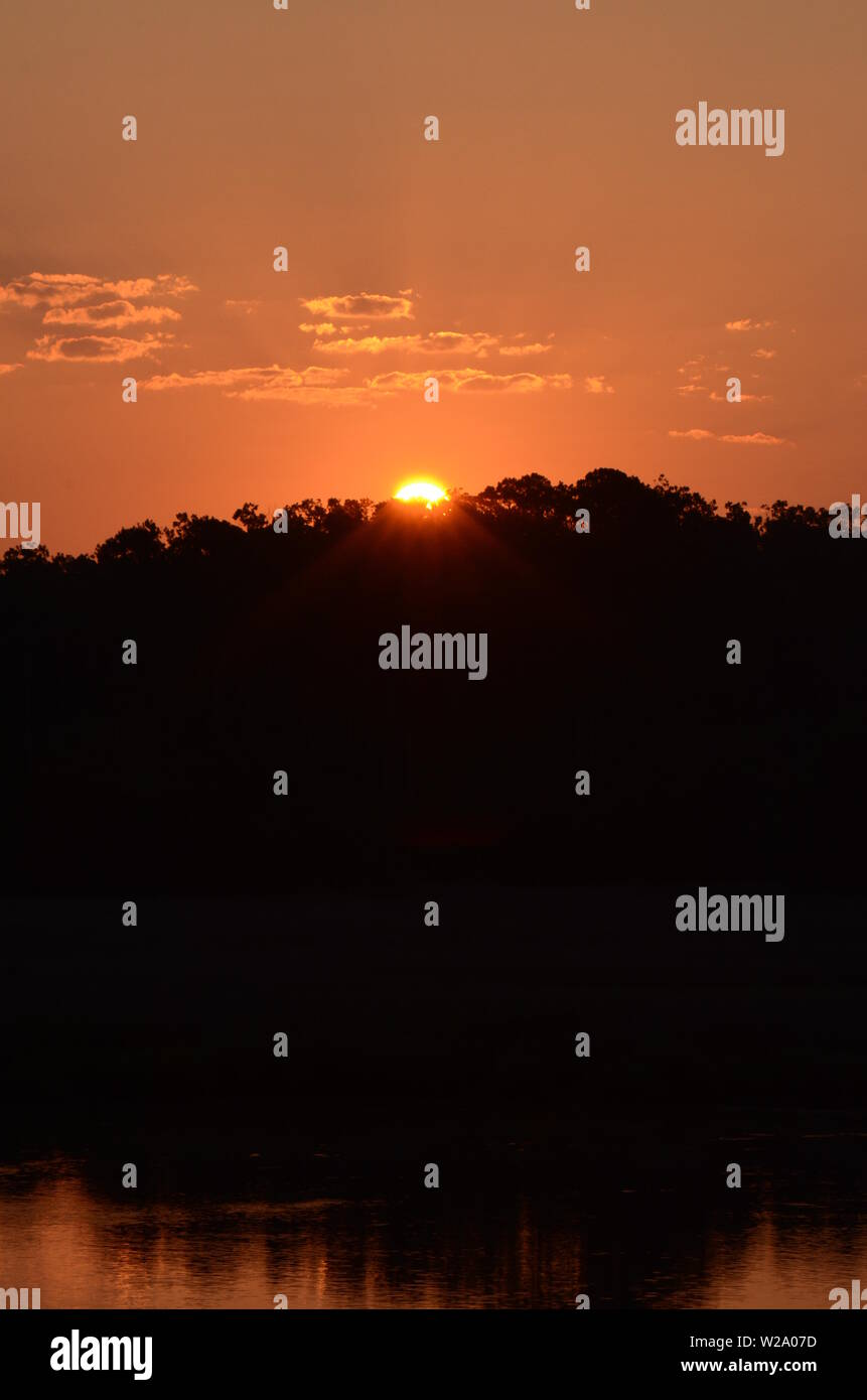 SOUTHERN PEACH SKIES A beautiful sunrise ascends above a forest off the Vernon river marsh in Savannah, Georgia Stock Photo