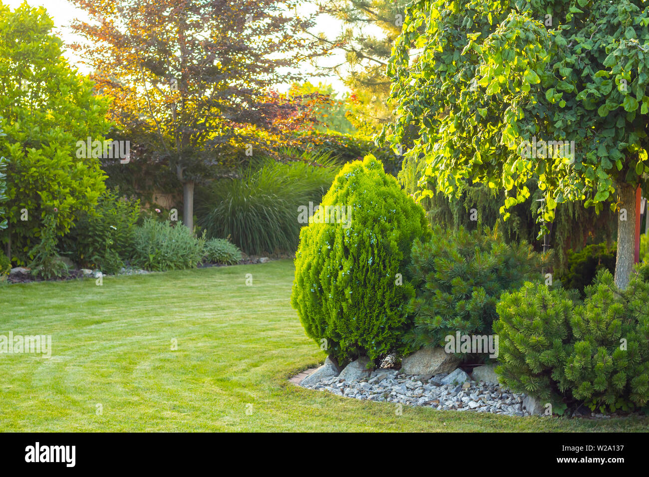 Home Garden With Decorative Trees And Plants Stock Photo