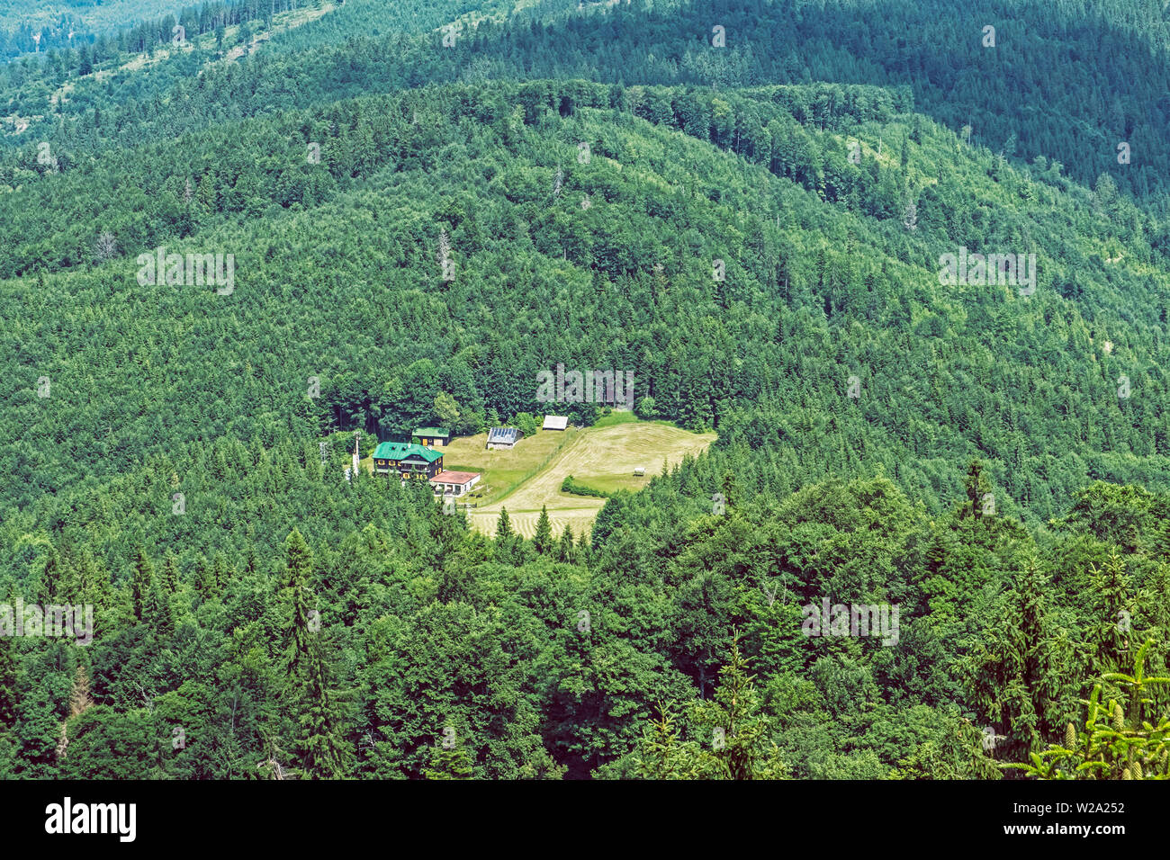 Coniferous forest and mountain hut for tourists from Hrb hill, Vepor, Slovak republic. Seasonal natural scene. Travel destination. - Stock Image