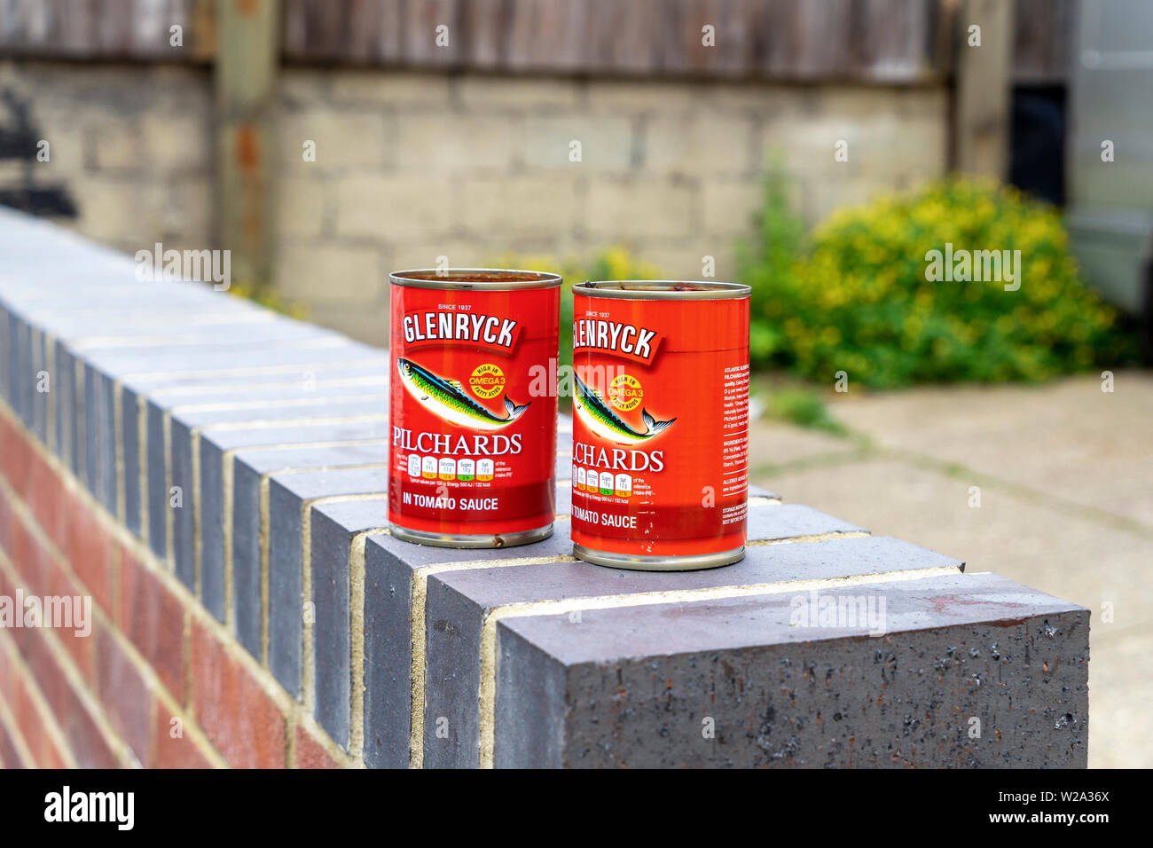 Empty Pilchard tins left on top of a brick wall - Stock Image