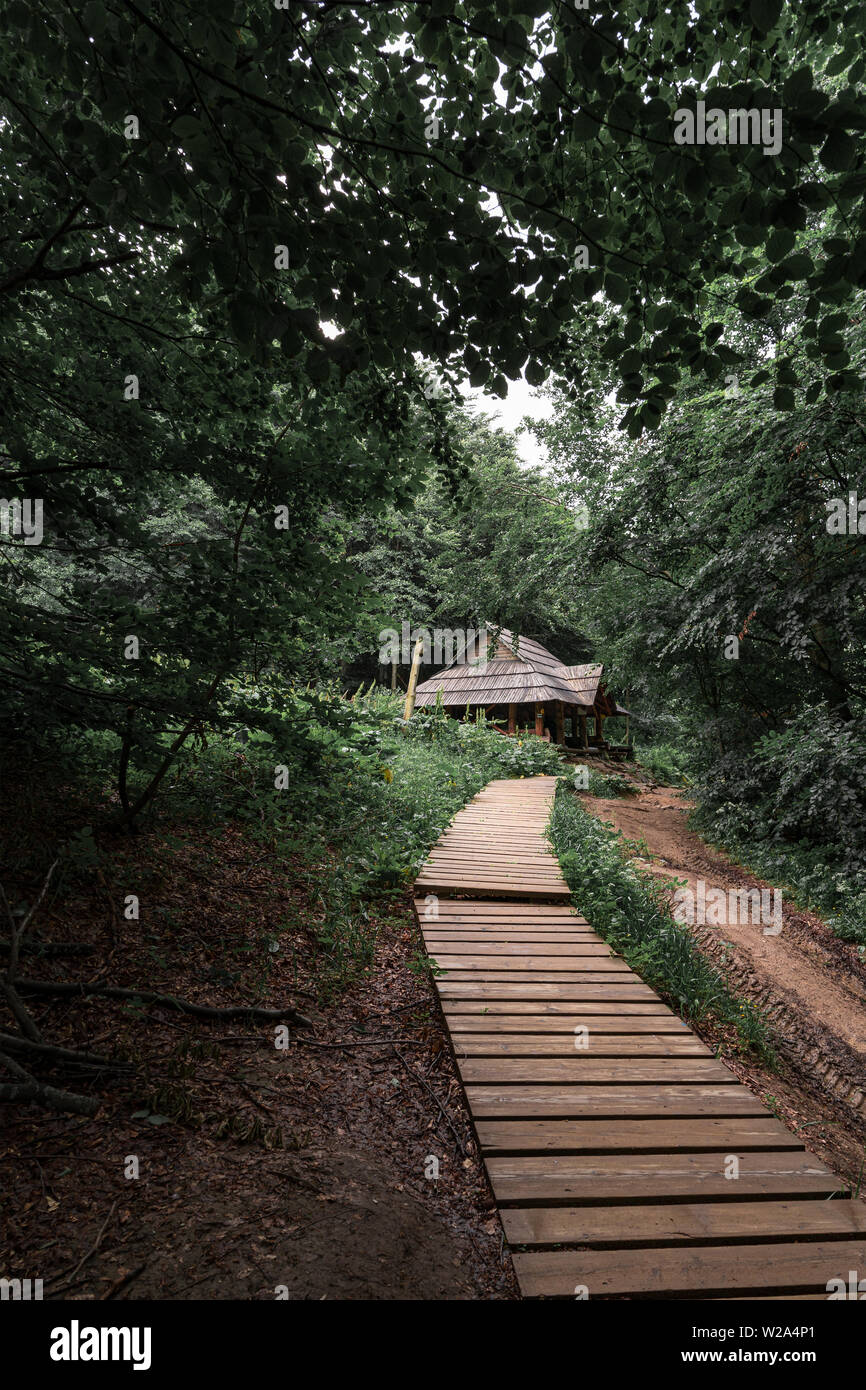 Wooden shelter in a forest on a trail towards Tarnica in Bieszczady Mountains, Poland. Vertical orientation. - Stock Image