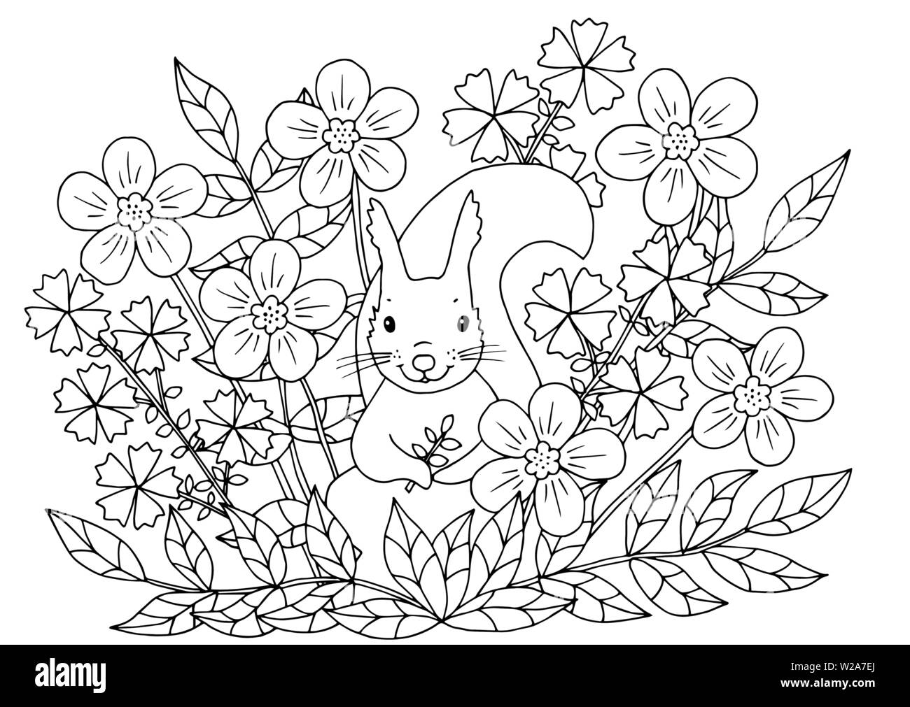 Abstract coloring page with summer flowers and cute squirrel, for kids and  adults Stock Vector Image & Art - Alamy