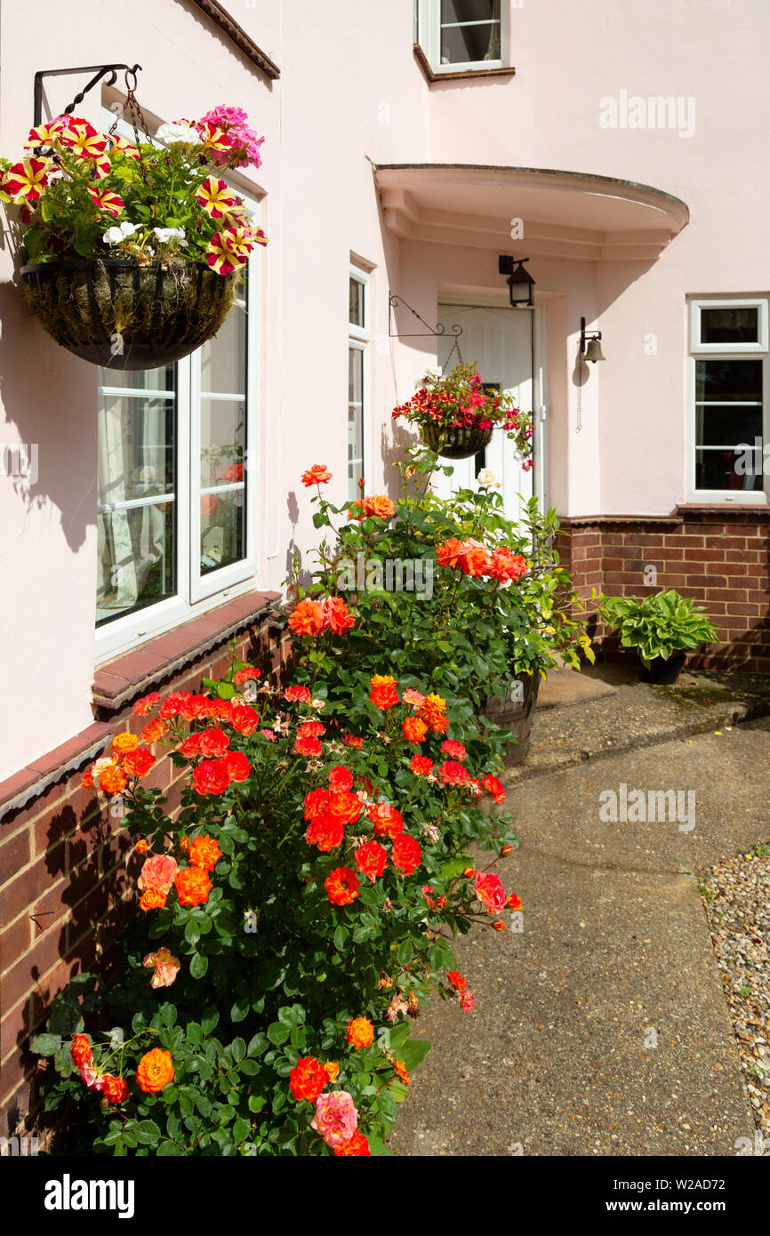 House UK; Domestic house entrance, in summer with flowers and hanging baskets, Suffolk UK - Stock Image