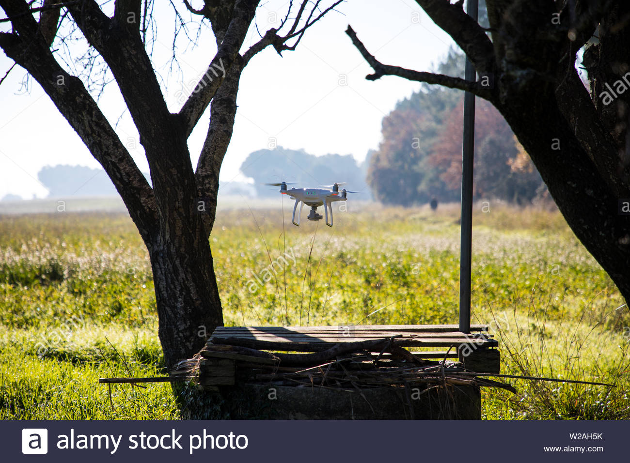 Drone over water well and under tree on sunny winter morning - Stock Image