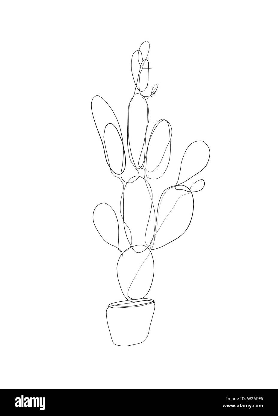 Abstract Line Drawing Of A Cactus Succulent House Plant Art Work Of Plants For Private Commercial And Editorial Use Abstract Line Drawing Of A Cact Stock Photo Alamy