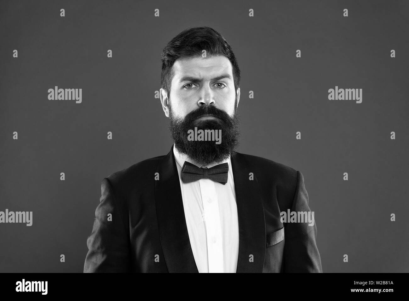 Bearded man in tuxedo and bow tie. Formal event. bearded man groom with beard in wedding suit. Businessman in tailored tuxedo. Formal wear male fashion. bearded hipster man. bearded groom in tuxedo. - Stock Image