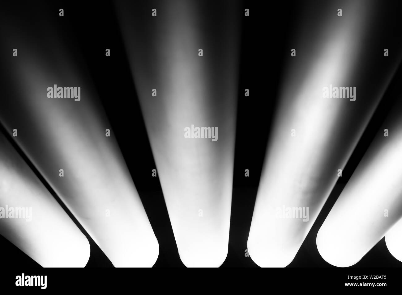 Neon Black And White Stock Photos Images Alamy