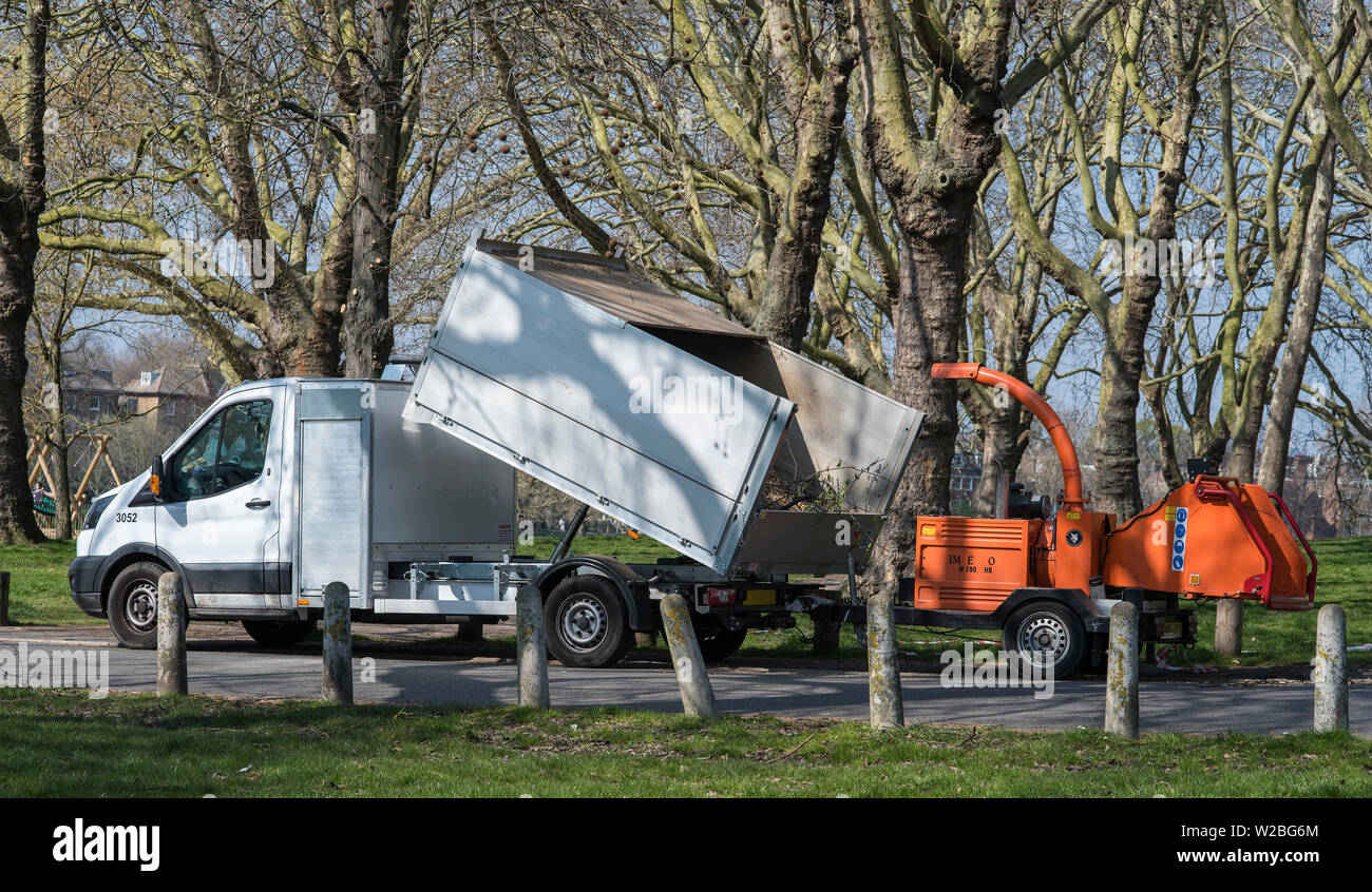 Industrial wood chipper attached to a walled flatbed van to carry away the chips for mulch or composting. - Stock Image