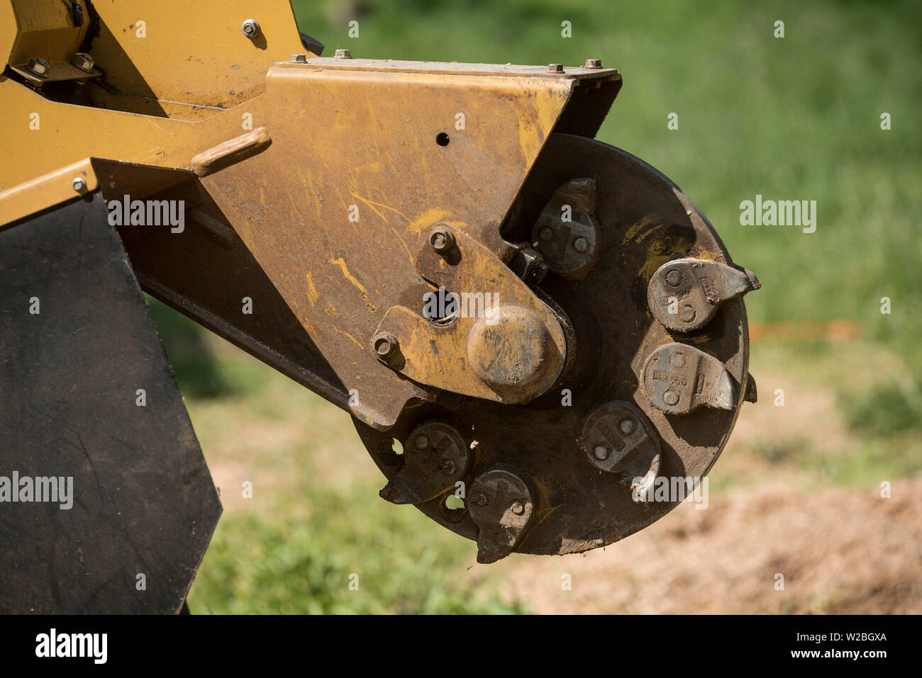 A close up of the cutting head of an industrial stump grinder. - Stock Image
