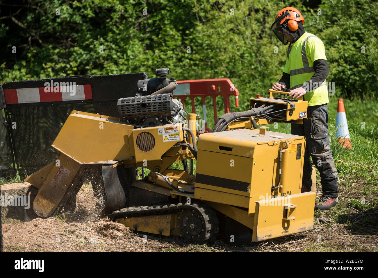 A man in full PPE is seen controlling an industrial stump grinder. - Stock Image
