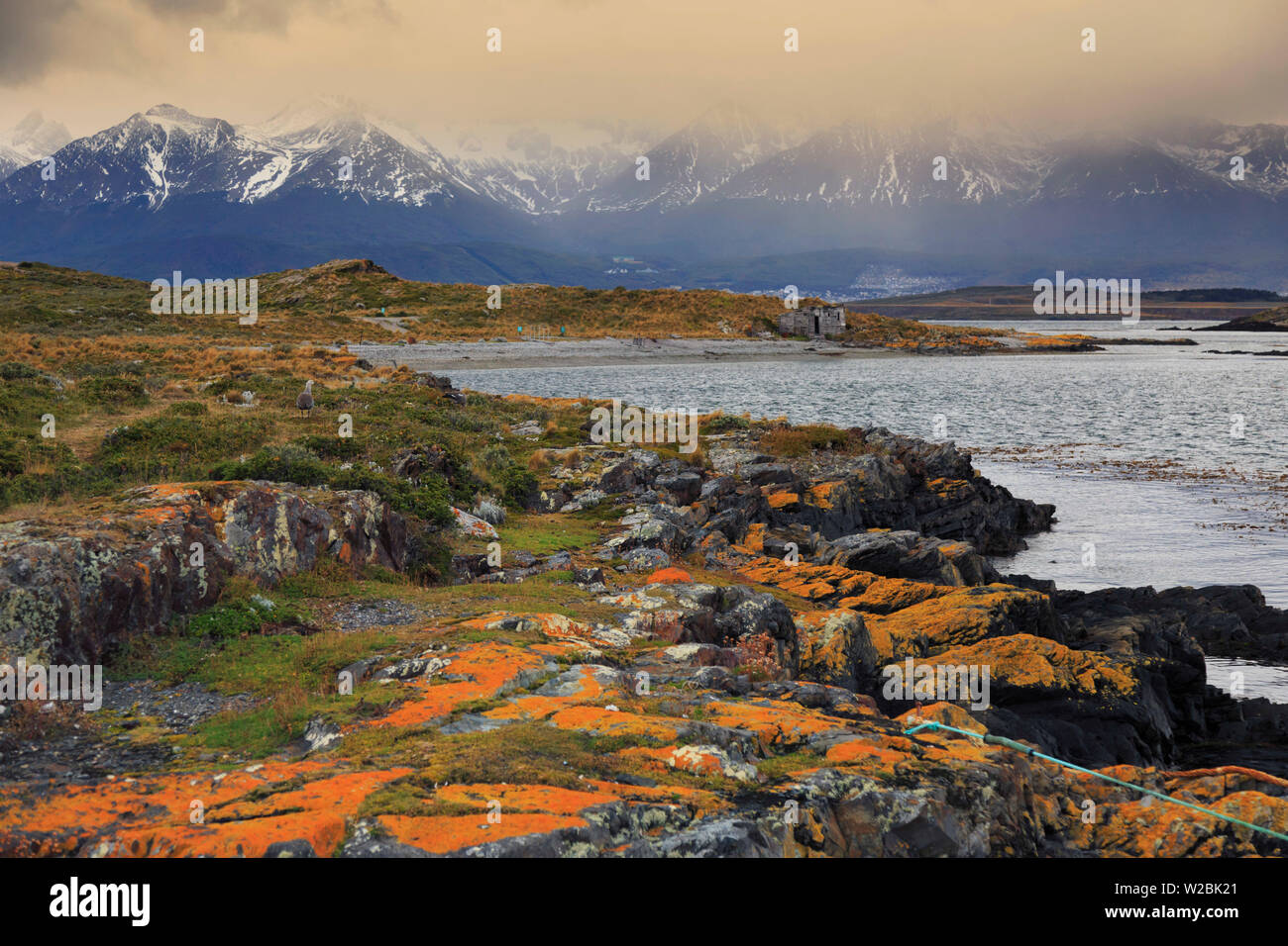 Argentina, Tierra del Fuego, Ushuaia, Beagle Channel - Stock Image