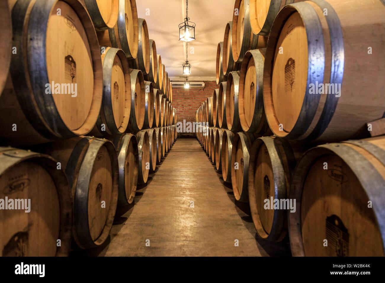 Argentina, Salta, Cafayate, Bodega San Pedro de Yacoyuya, Torrontes Grape Wineries - Stock Image