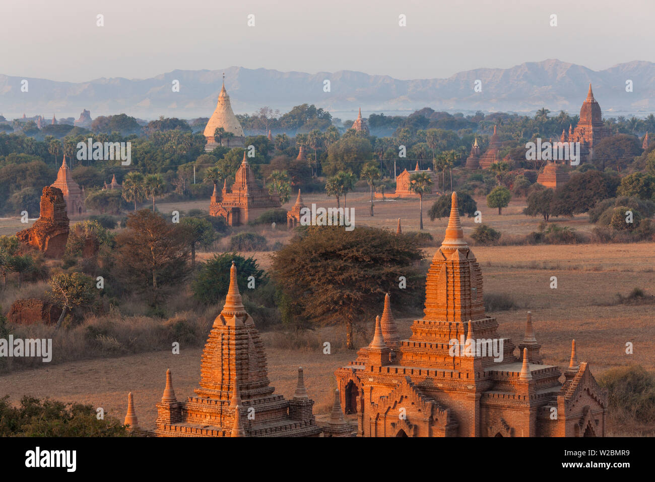 View of the pagodas and temples of the ancient ruined city of Bagan (Pagan), Myanmar, (Burma) Stock Photo