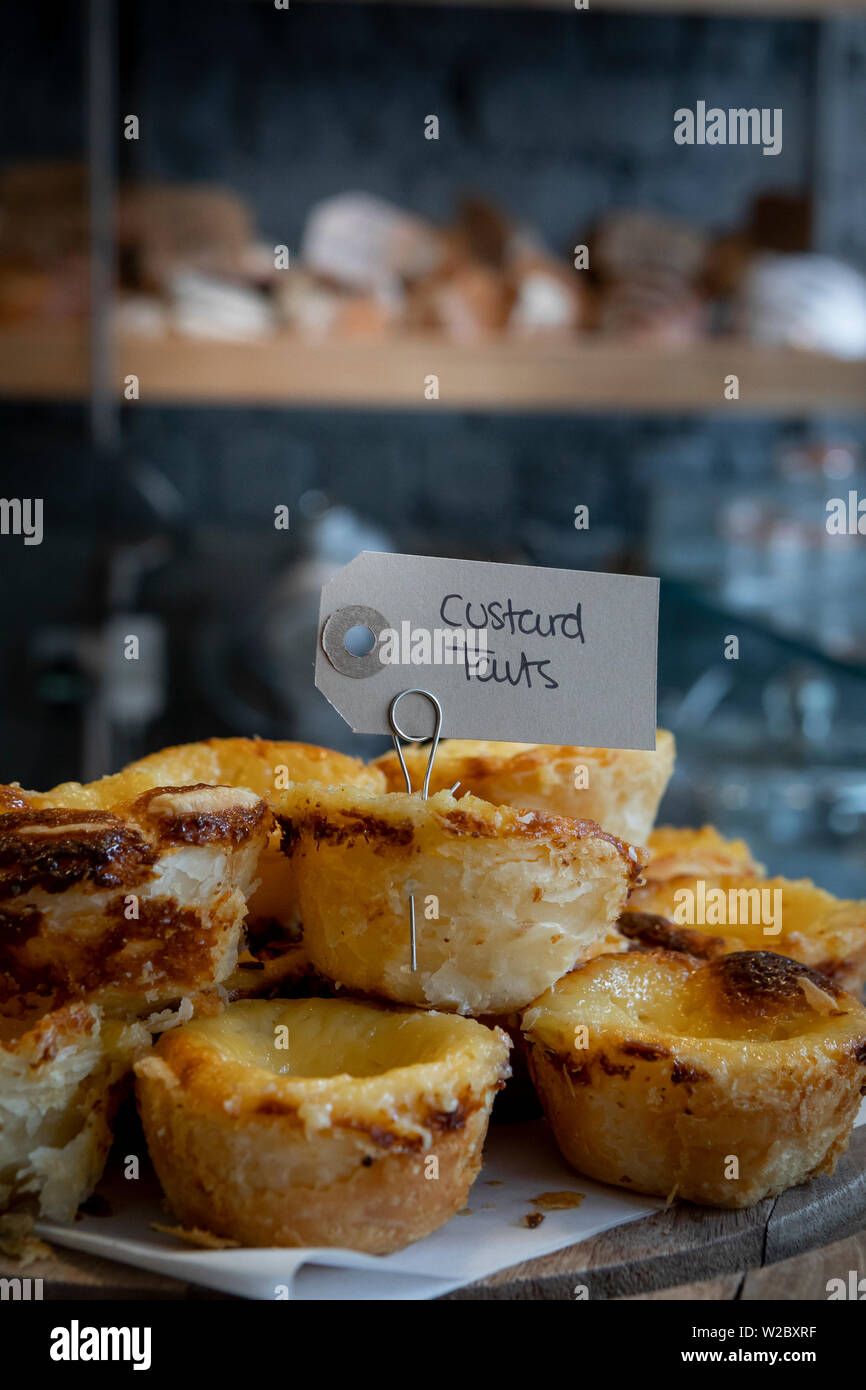 custard pie on a plate with a blurred background - Stock Image