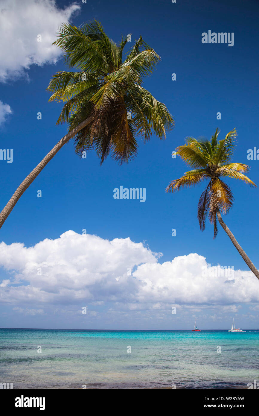 Dominican Republic, Punta Cana, Parque Nacional del Este, Saona Island, Catuano Beach Stock Photo