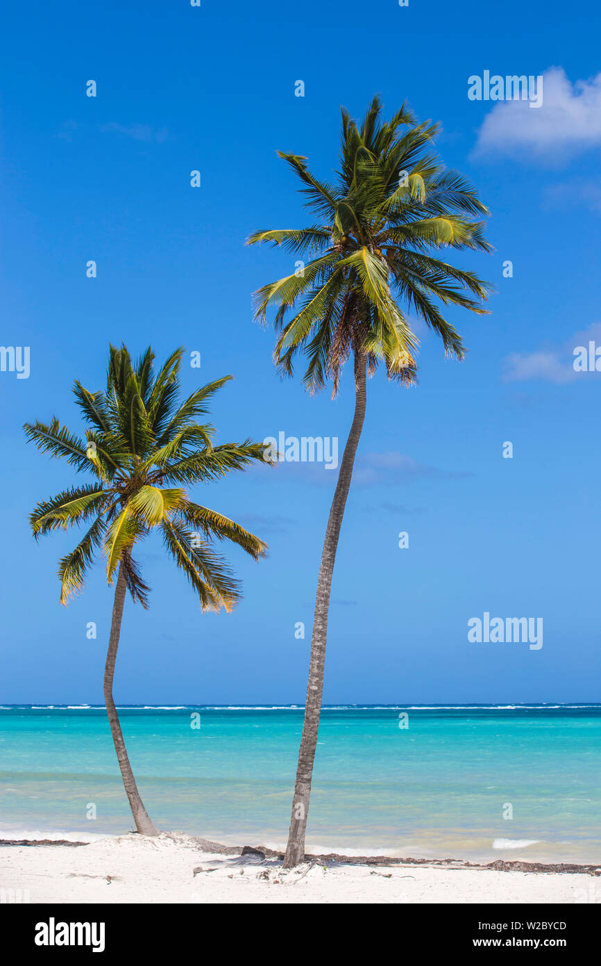 Dominican Republic, Punta Cana, Cap Cana beach Stock Photo