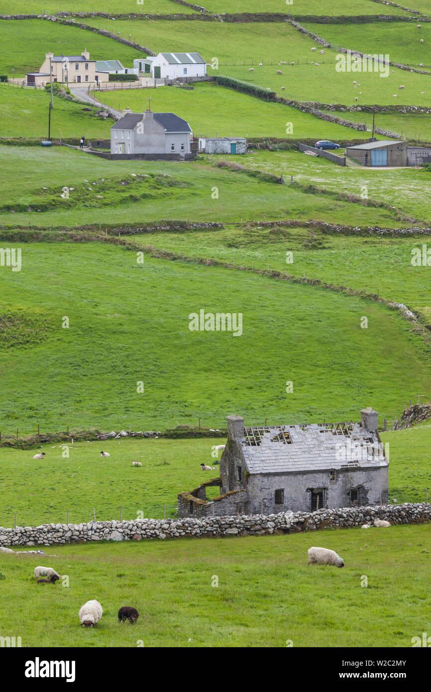 Ireland, County Cork, Beara Peninsula, Ring of Beara, Cahermore, landscape - Stock Image