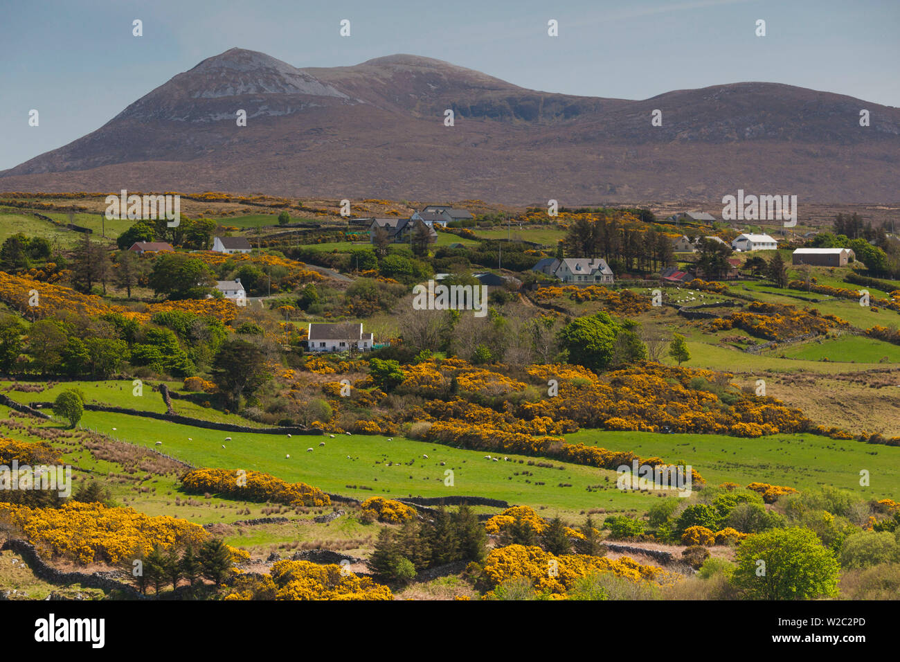 Ireland, County Donegal, Dunfanaghy, landscape by Muckish Mountain - Stock Image
