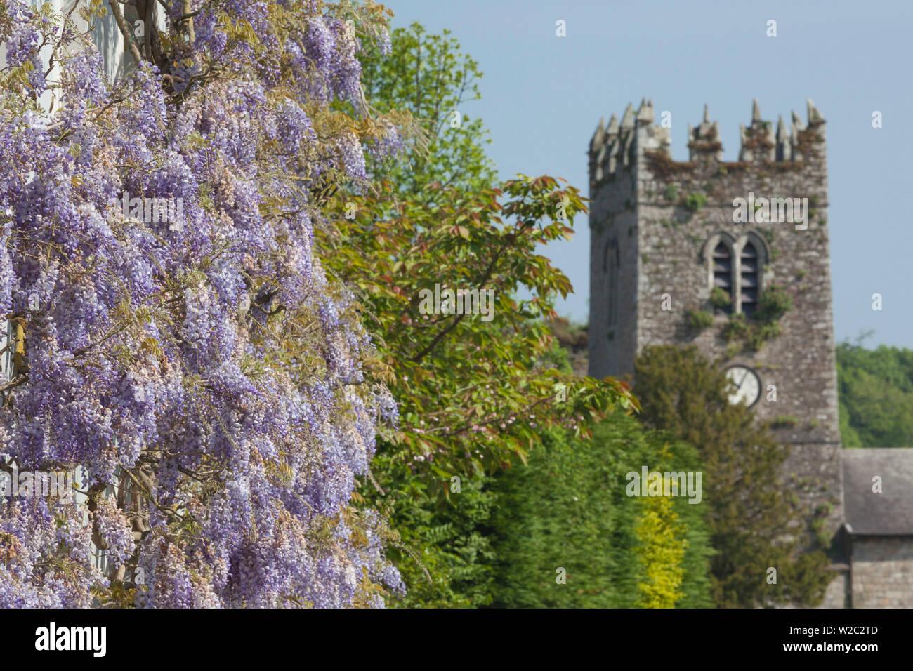 Ireland, County Kilkenny, Inistioge, flower covered house - Stock Image