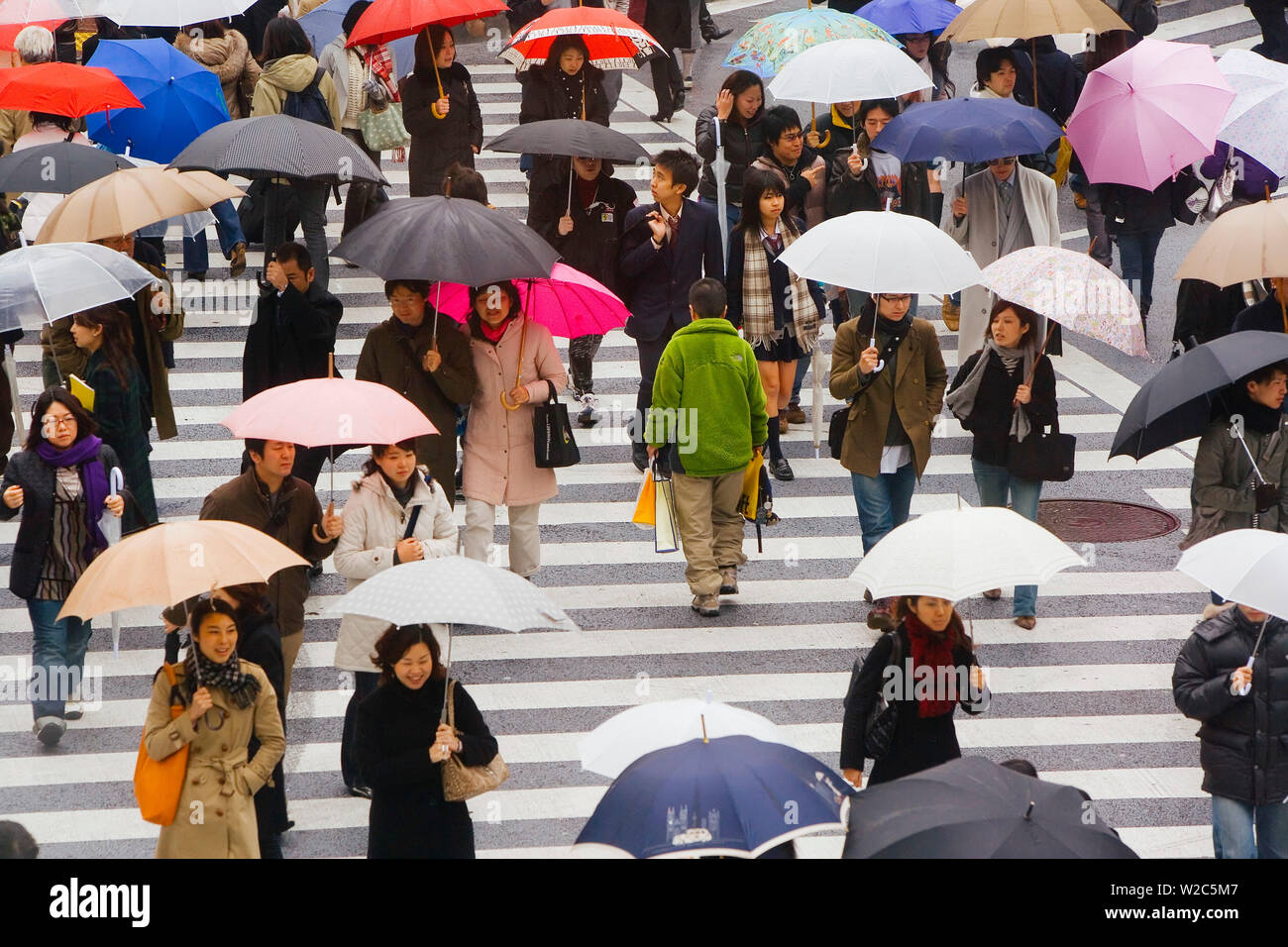 Asia, Japan, Honshu, Tokyo, Shibuya, pedestrians crossing a busy intersection with umbrellas on a rainy day - Stock Image