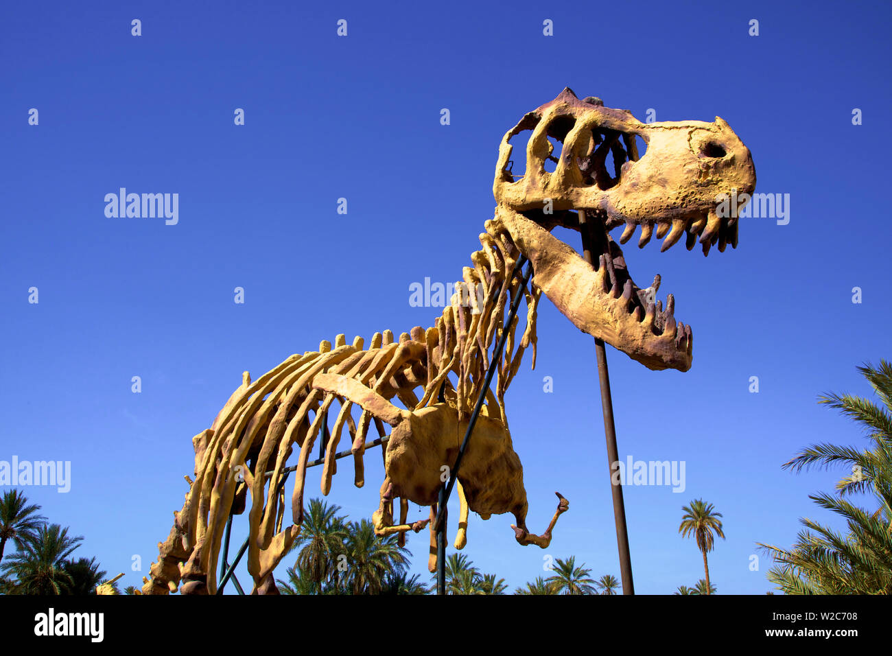 Full Scale Maquette Of A Dinosaur, Tahiri Museum, Rissani, Morocco, North Africa Stock Photo