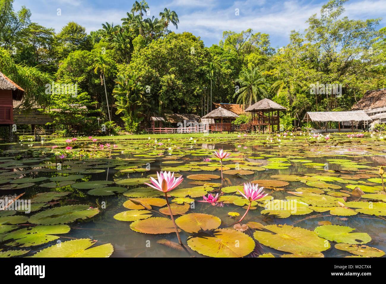 Heritage Cultural Village & water lillies, Sabah State Museum, Kota Kinabalu, Sabah, Borneo, Malaysia - Stock Image