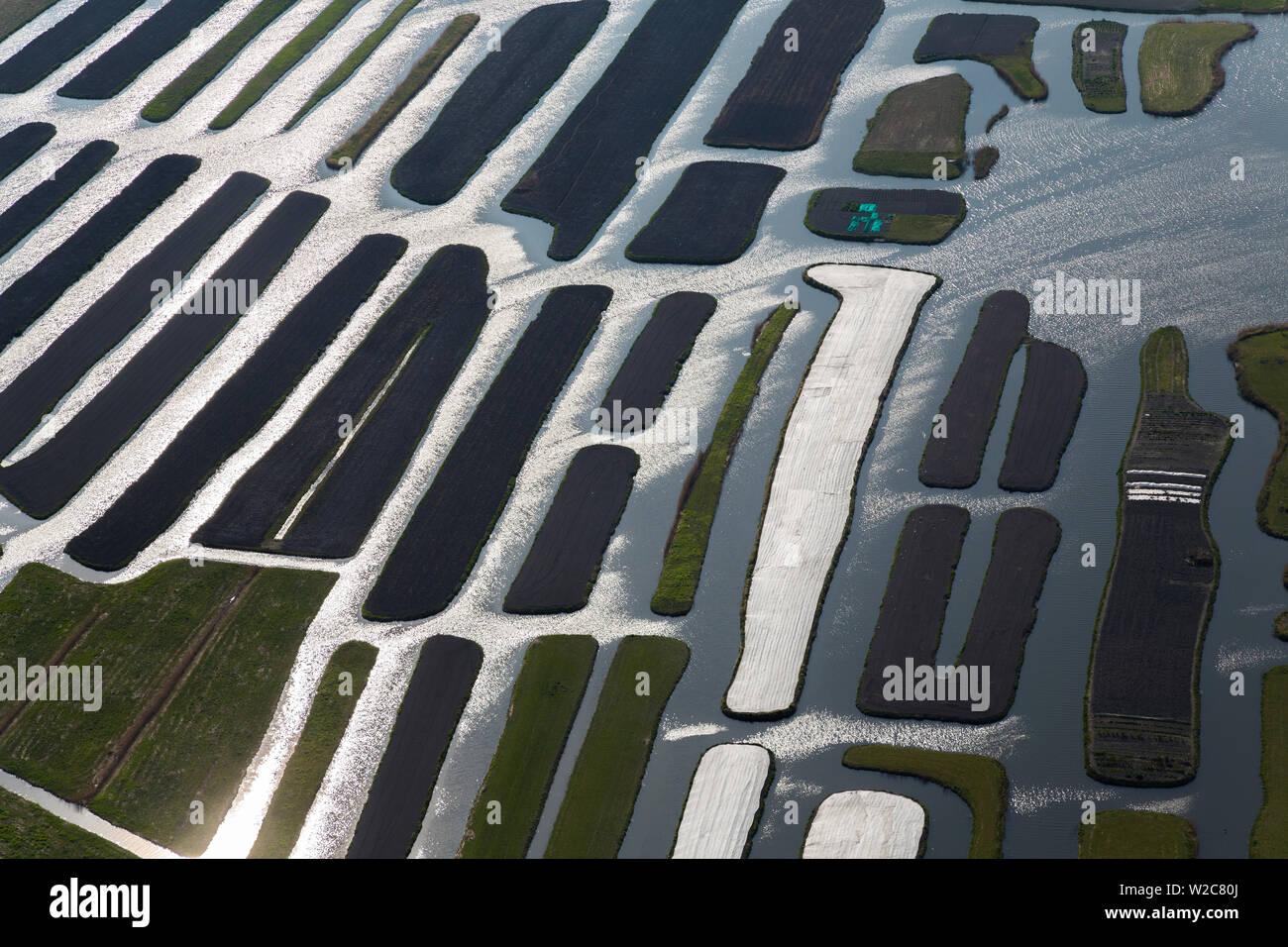 Polder or re-claimed lands, North Holland, Netherlands - Stock Image