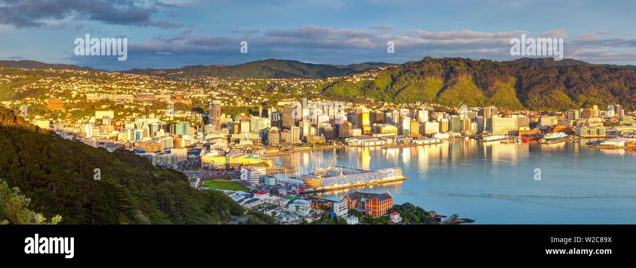 Elevated view over central Wellington illuminated at sunrise, Wellington, North Island, New Zealand - Stock Image