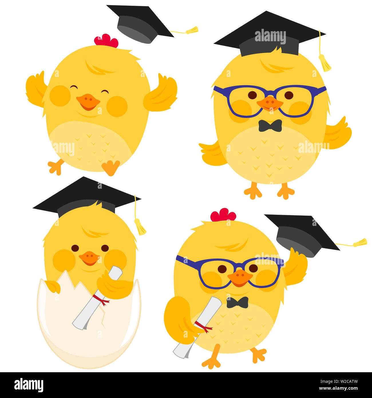 Illustration set of cute little chickens with graduation hats and diplomas. - Stock Image