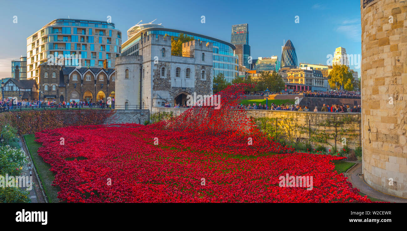 England, London, Tower of London, Blood Swept Lands and Seas of Red by ceramic artist Paul Cummins, with setting by stage designer Tom Piper, 888,246 ceramic poppies marking one hundred years since the first full day of Britain's involvement in the First World War - Stock Image