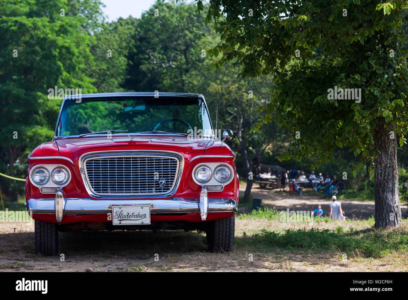 USA, Massachusetts, Gloucester, Antique Car Show, 1960s-era, Studebaker Lark - Stock Image