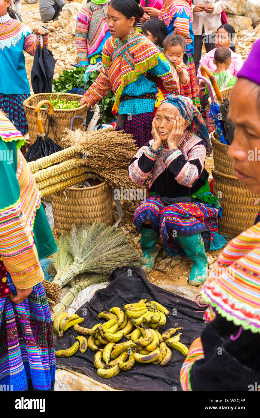Flower Hmong tribes people at market, nr Bac Ha, nr Sapa, Vietnam - Stock Image