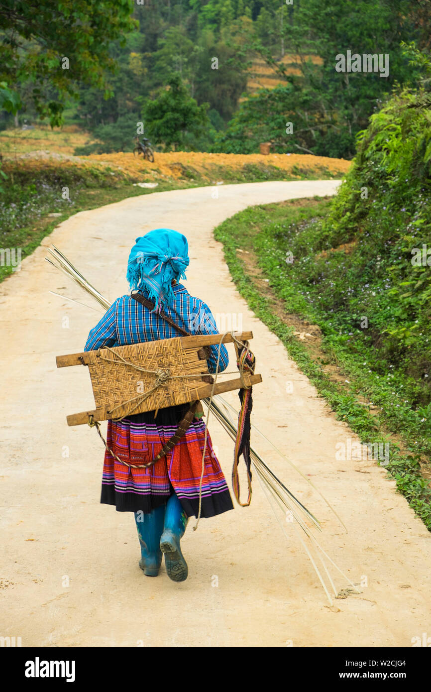 Flower Hmong woman walking along road, nr Bac Ha, nr Sapa, N. Vietnam - Stock Image