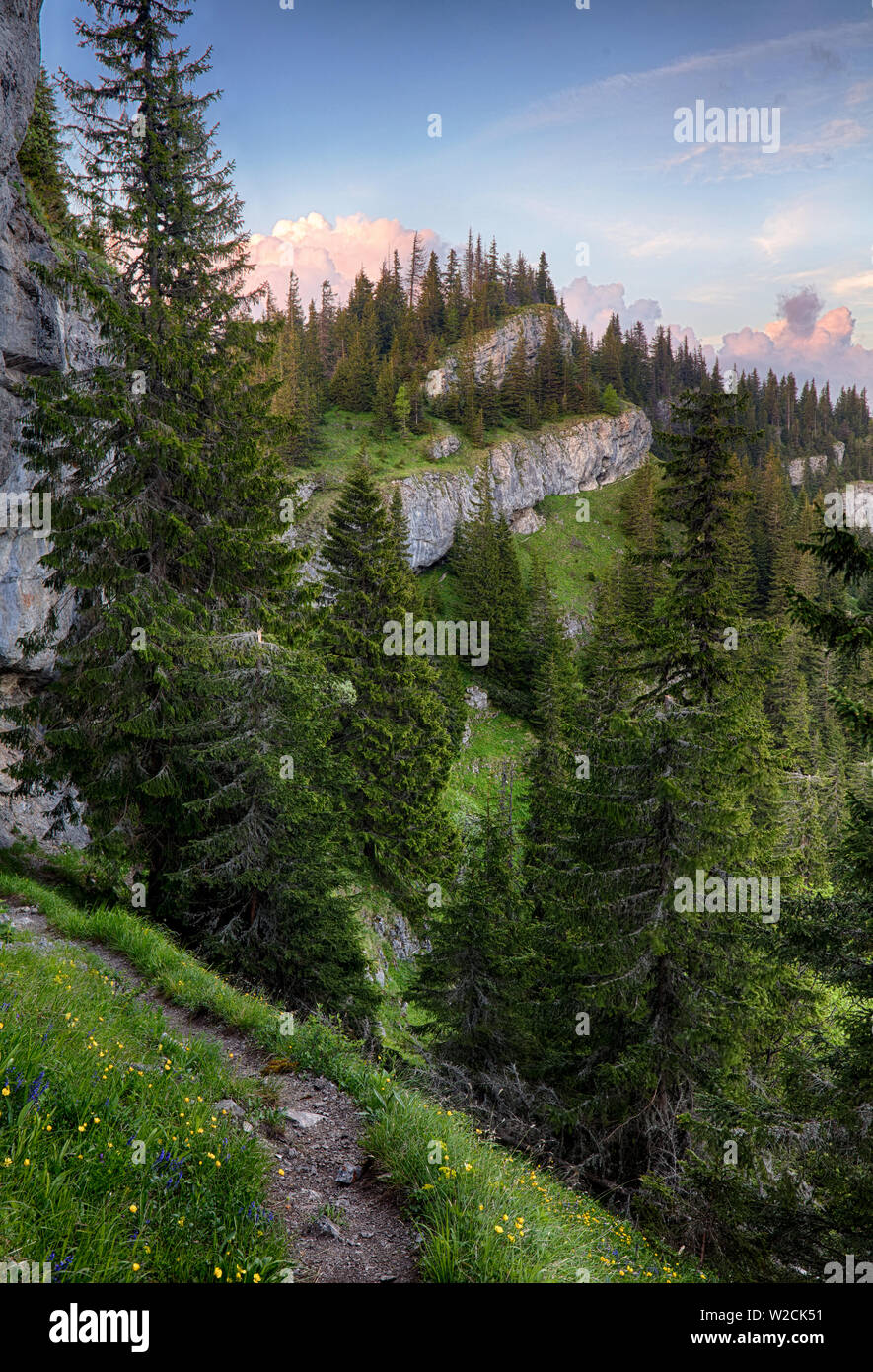 Mountain with rocks and forest - Ohniste, Low Tatras Stock Photo