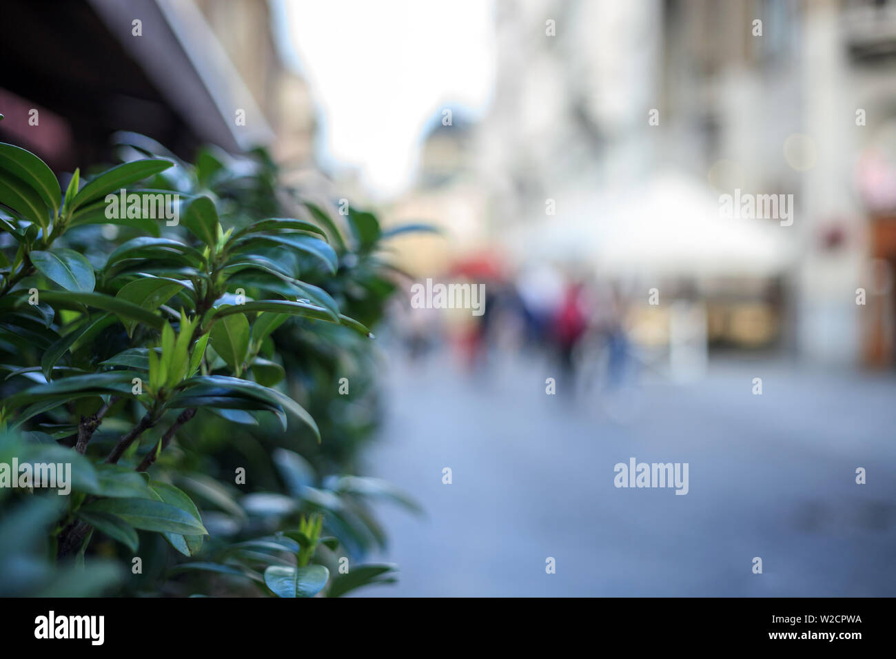 Blurred background of street and walking people. Defocused city life - Stock Image